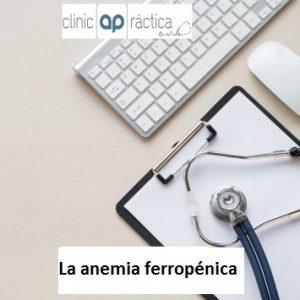 Anemia Ferropenica_imagen web