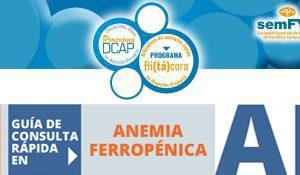 Bitacora_Anemia
