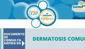 Bitacora_Dermatosis