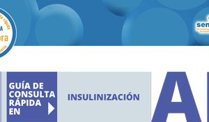 Bitacora_Insulinizacion