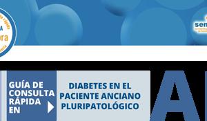 Bitacora_Diabetes_anciano pluripatologico
